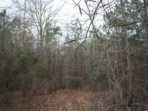 49 Acres Lowndes Co, Ft, Deposit : Ft. Deposit : Lowndes County : Alabama