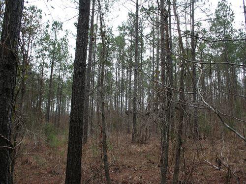 98 Acres Lowndes Co, Ft, Deposit : Fort Deposit : Lowndes County : Alabama