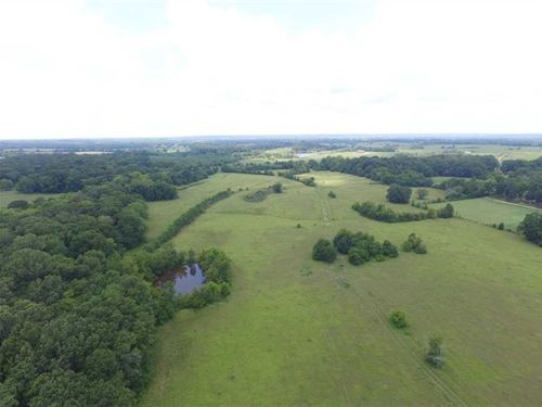 Acreage With Home Site And Pasture : Hope Hull : Lowndes County : Alabama