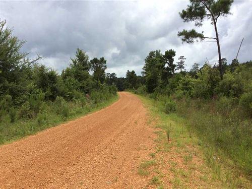 Peters Road Tract, Winn Parish, 50 : Winnfield : Winn Parish : Louisiana