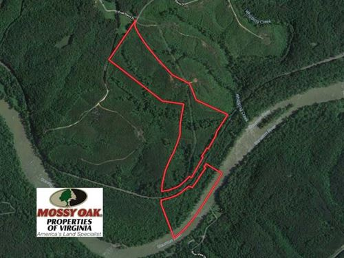84 Acres of Hunting Land For Sale : Brookneal : Campbell County : Virginia