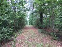 Dodson Timber Tract, Winn Parish : Dodson : Winn Parish : Louisiana