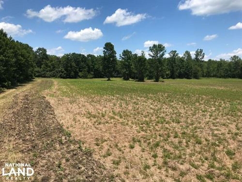 Bigbee Valley Hunting / Potential : Macon : Noxubee County : Mississippi