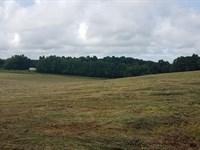 McLeod Tract 16+/- Acre Mini Farm : Ashland : Clay County : Alabama