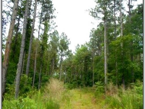 172.2 Acres In Grenada County In Go : Gore Springs : Grenada County : Mississippi