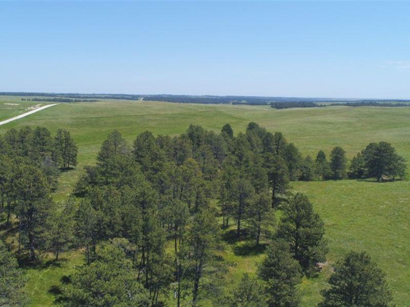 Pine Ridge Range And Timber Parcel : Crawford : Dawes County : Nebraska