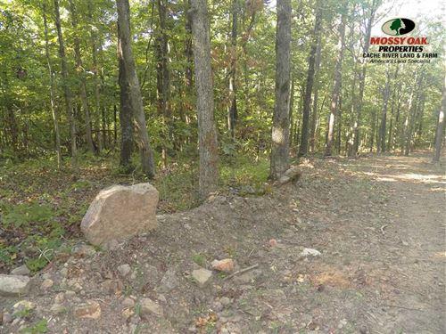 80Acres+Mature Timber+Beautiful Vi : Shirley : Van Buren County : Arkansas