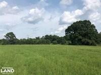 Georgiana Homesite & Pasture Land : Georgiana : Butler County : Alabama