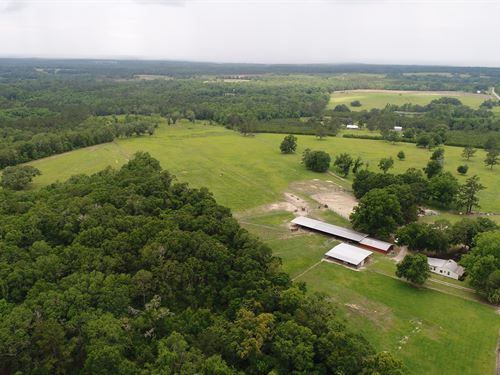 60 Acre Income Producing Property : Madison : Florida