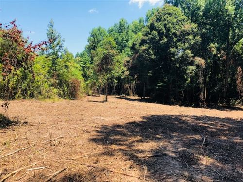 13.5 Acres Carto Road / Tylertown : Tylertown : Walthall County : Mississippi
