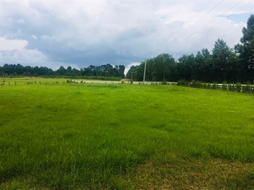 5 Acres Hwy 48 West : Tylertown : Walthall County : Mississippi