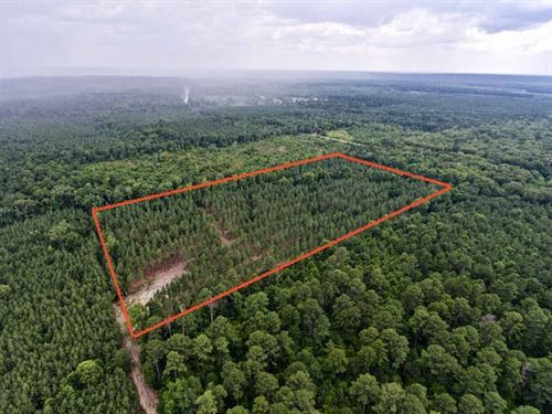 20 Acre Recreational/Timber Acreage : Benton : Bossier Parish : Louisiana