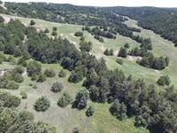 Jeffrey Lake Rangeland Auction : Brady : Lincoln County : Nebraska