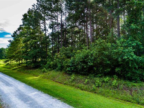 Beautiful Land, Private Home Site : Covington : Walton County : Georgia