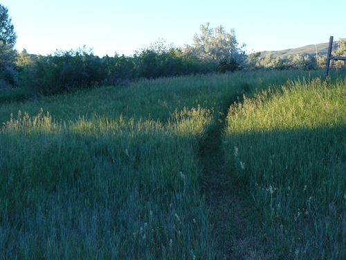 Scott Drive Refuge : Lander : Fremont County : Wyoming