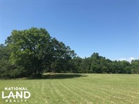 15 ac Mabank, Great Building Site : Mabank : Van Zandt County : Texas