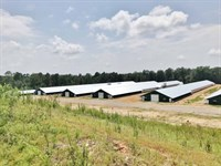 12 New Premium Pay Broiler Houses : Heidelberg : Jones County : Mississippi