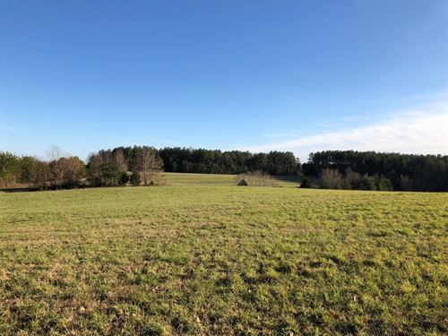 61 Acre Farm : Chatham : Pittsylvania County : Virginia