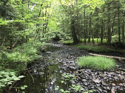 On Prince Brook : Osceola : Lewis County : New York