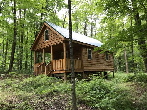 Florence Hill Cabin : Camden : Oneida County : New York
