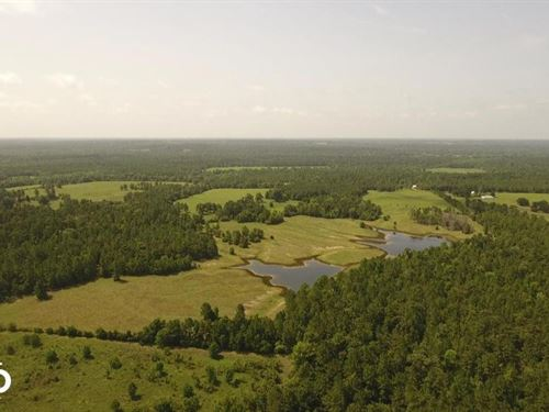 Spacious Ranch Near Lake Livingston : Leggett : Polk County : Texas