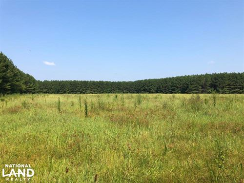 Timber And Crop Investment : Houlka : Calhoun County : Mississippi