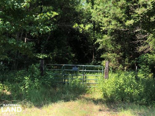Great Acreage on County Road 136 : Houlka : Calhoun County : Mississippi