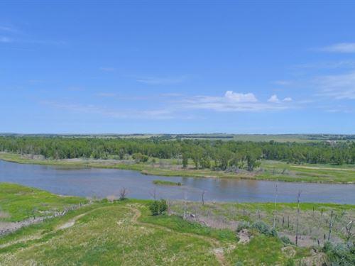 North Platte River Wildlife : North Platte : Lincoln County : Nebraska