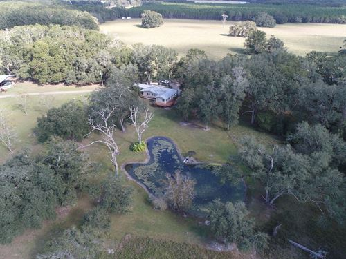 250 Acres In Suwanee County : Live Oak : Madison County : Florida