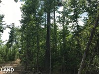 Berkeley Home Site & Rec Land : Jamestown : Berkeley County : South Carolina