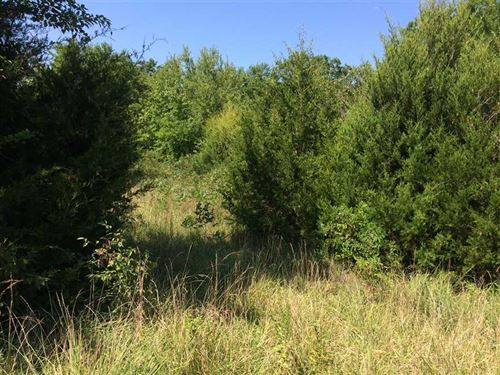 32 Acre Tract Of Hunting Proper : Neodesha : Montgomery County : Kansas