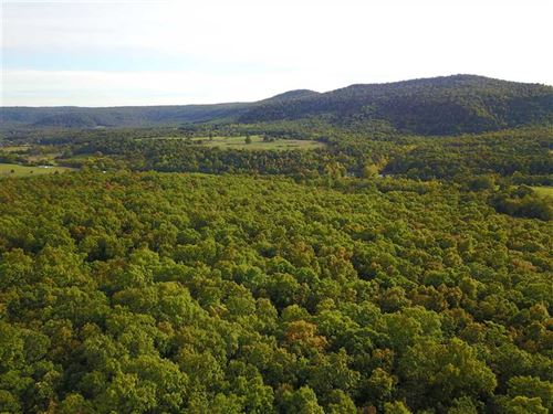 80 Acres of Recreational, Hunt : Timbo : Stone County : Arkansas