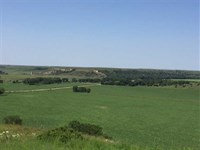 80 Acres of Tillable And Huntin : Russell : Russell County : Kansas