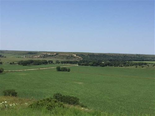 80 Acres of Tillable And Huntin : Russell : Kansas