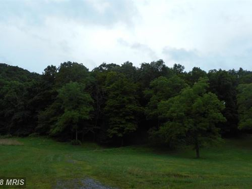 Bethel Rd Wooded Land : Slanesville : Hampshire County : West Virginia