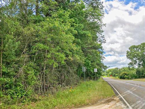 48 Acres FM 1746 : Woodville : Tyler County : Texas