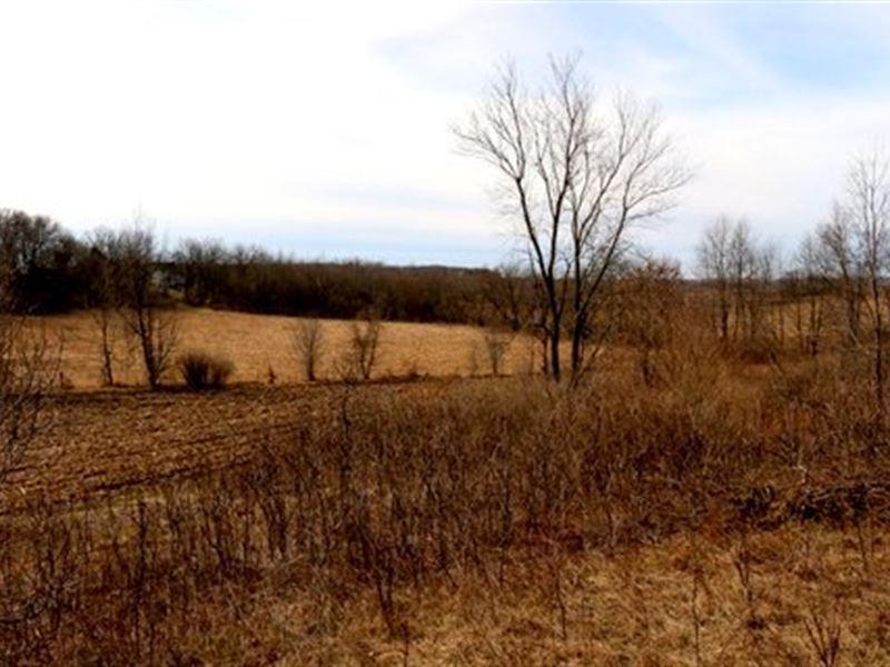 Beautiful Setting For Dream Home : Brooklyn : Green County : Wisconsin