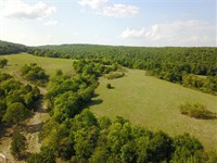 240 Acres Cattle Farm With Gre : Mountain View : Stone County : Arkansas