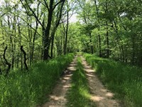 Great Recreational Property in Mau : Columbia : Maury County : Tennessee