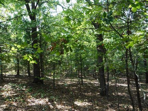 40 Acres of Recreational Timberlan : Paris : Logan County : Arkansas