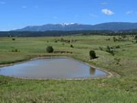 Spectacular Canyon, River & Prairie : Beulah : Pueblo County : Colorado