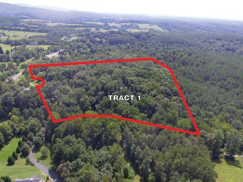 Sealed Bid Auction : Barboursville : Albemarle County : Virginia