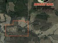 Secluded 220 Acre Hunting Paradise : Yates Center : Woodson County : Kansas