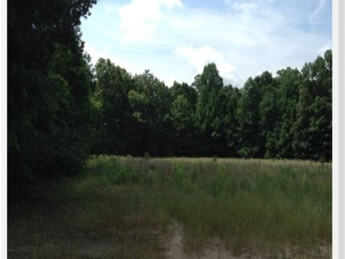 28 Acres In Holmes County, Ms : Lexington : Holmes County : Mississippi