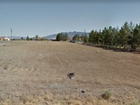 Beautiful Lot With Mountain Views : Pahrump : Nye County : Nevada