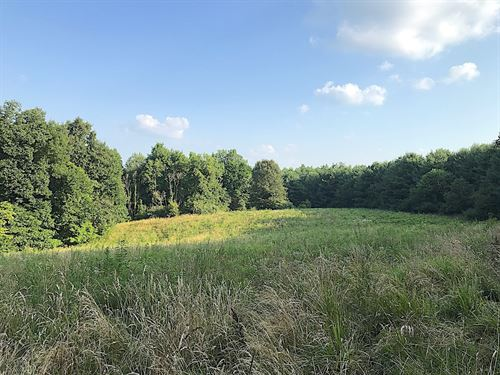 Mulberry Rd, 17 Acres : Mt Perry : Licking County : Ohio