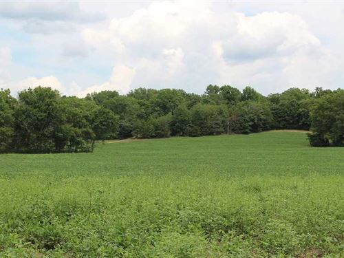 Osage County Tillable Property Pro : Morrison : Osage County : Missouri