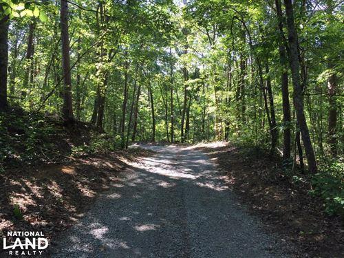 Springville Pine Mountain Homesite : Springville : Saint Clair County : Alabama