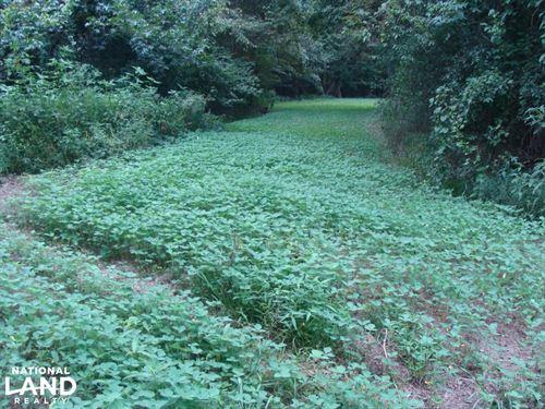Lonoke County Recreational And Hunt : Carlisle : Lonoke County : Arkansas