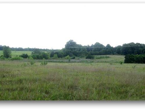150 Acres In Oktibbeha County : Starkville : Oktibbeha County : Mississippi